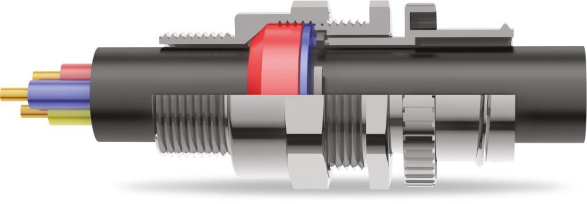 A2FCNF Cable Gland 3D Diagram