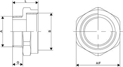Adaptor NPT Diagram