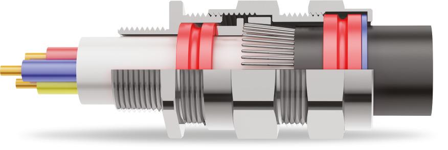 E1W Double Compression Cable Gland 3D Diagram